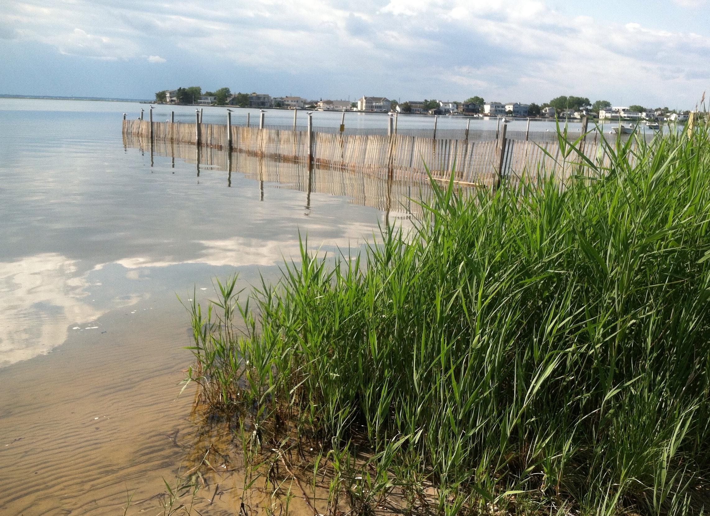 September 2016 Beach Haven West Real Estate Market Sales