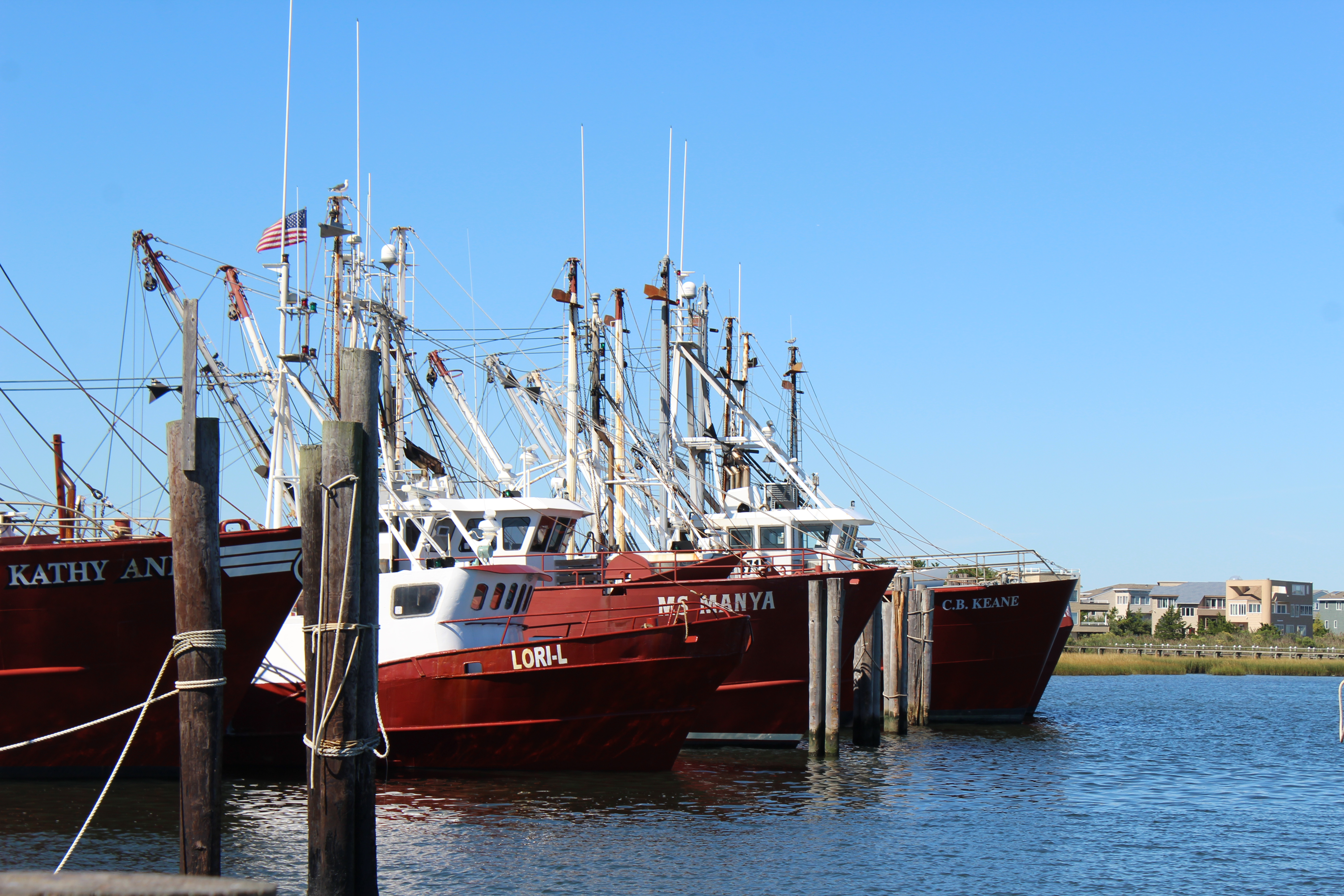 Southern Ocean County Real Estate